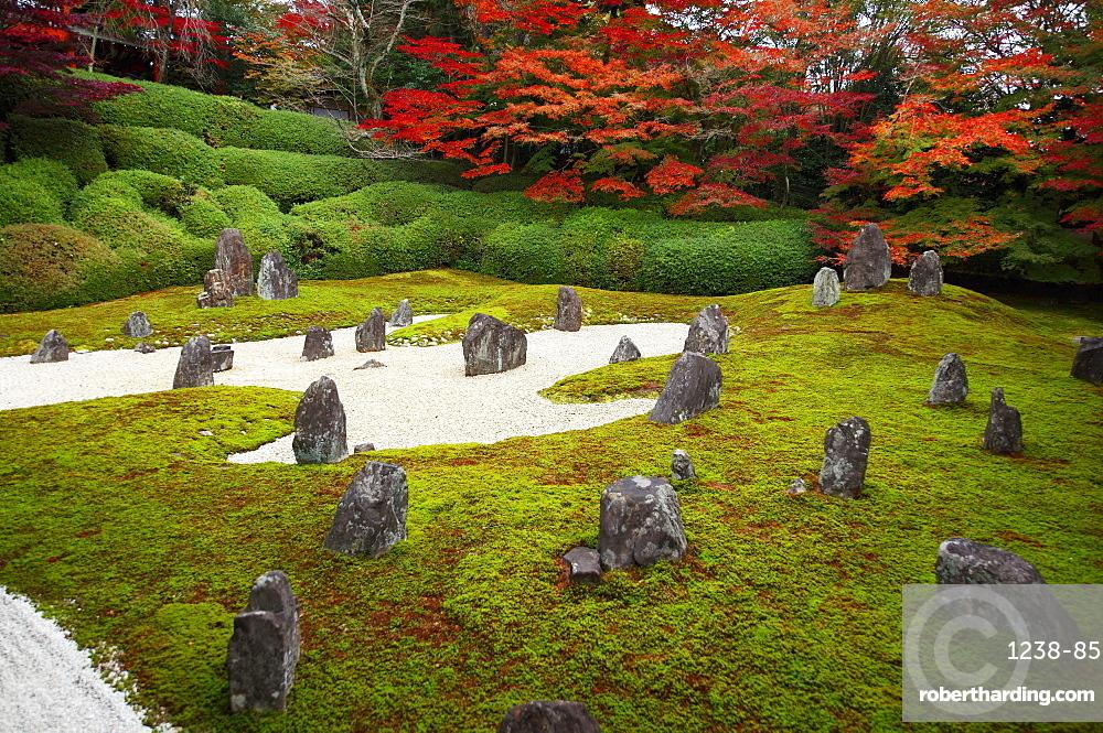 Komyo-in temple moss garden in autumn, Kyoto, Japan, Asia