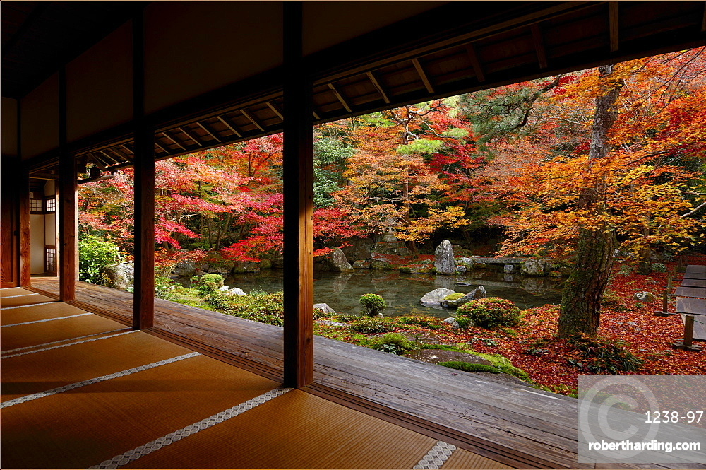 Late autumn in Renge-ji temple pond garden, Kyoto, Japan, Asia