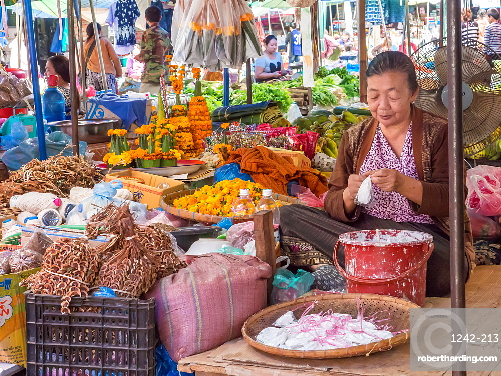 Vendor in central outdoor market, Luang Prabang, Laos, Indochina, Southeast Asia, Asia