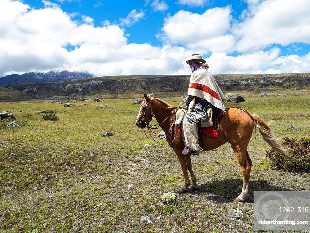 Indigenous man on a horse in high paramo landscape, Cotopaxi National Park, Andes mountains, Ecuador, South America