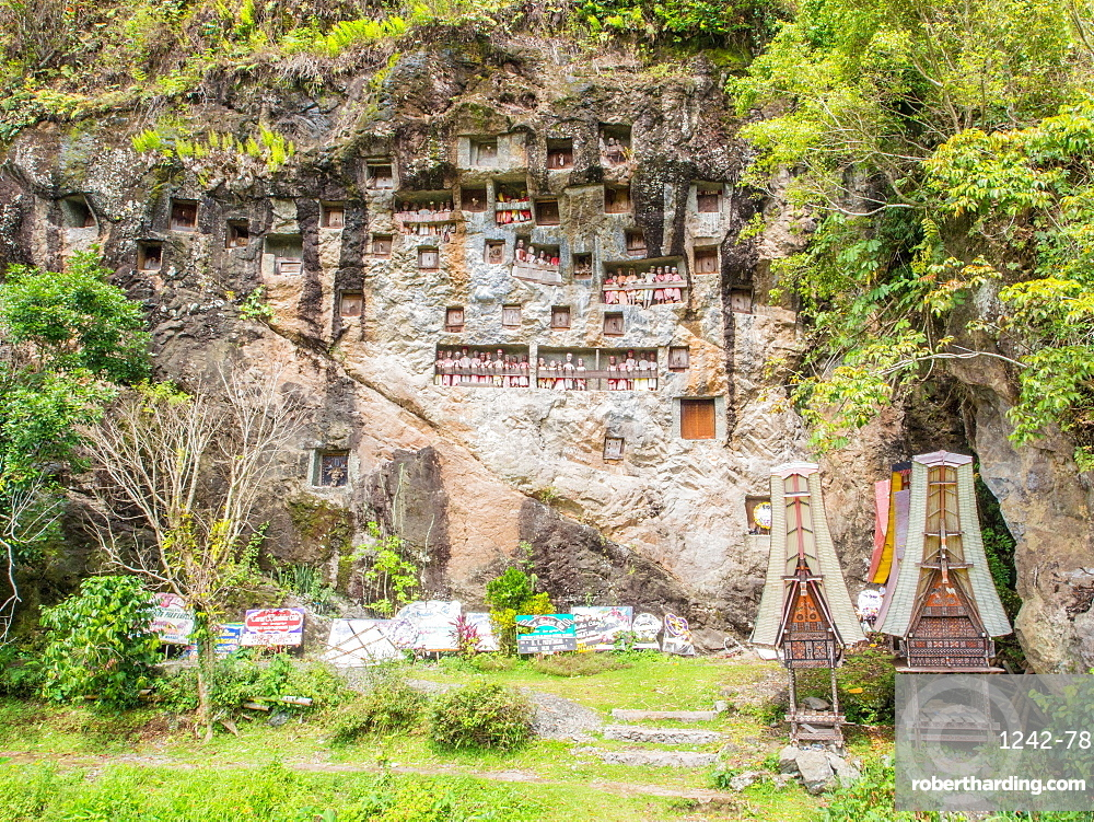 At this burial cliff, condolence signs from past funerals and coffin carriers shaped like traditional Torajan houses are left below the crypts and tao-taos, Tana Toraja, Sulawesi, Indonesia, Southeast Asia, Asia