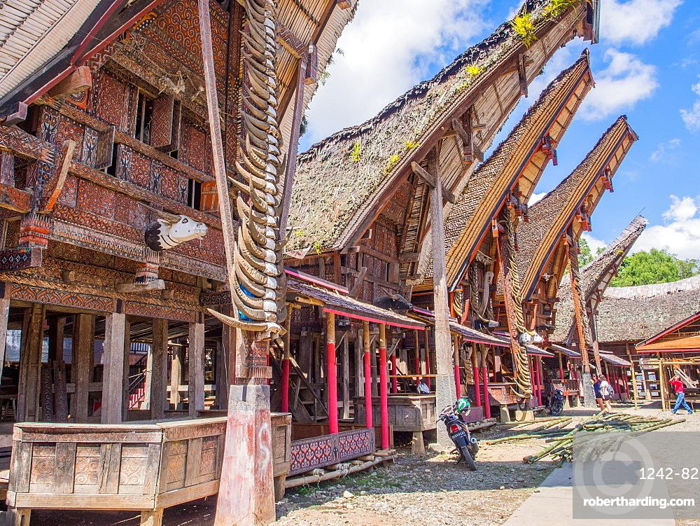Row of traditional houses (tongkanon), Tana Toraja, Sulawesi, Indonesia, Southeast Asia, Asia