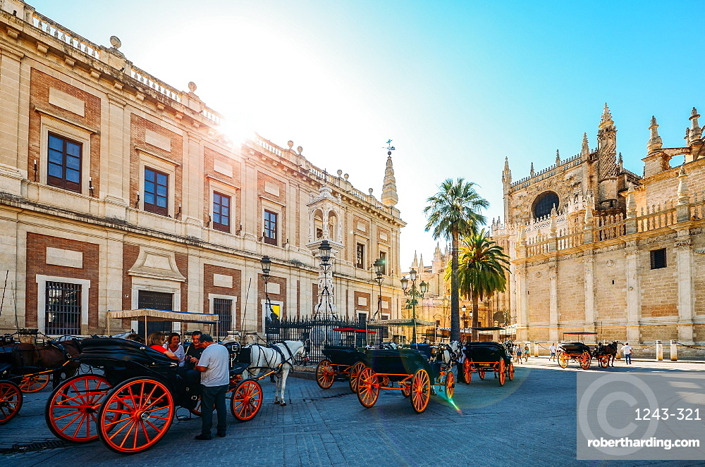 Horse-drawn carriages for hire on Plaza del Triunfo, Seville, Andalusia, Spain, Europe