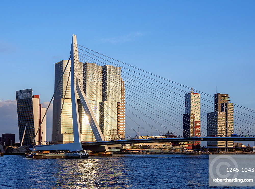 Erasmus Bridge, Rotterdam, South Holland, The Netherlands, Europe