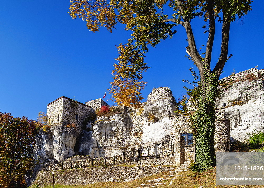 Bakowiec Castle in Morsko, Trail of the Eagles' Nests, Krakow-Czestochowa Upland or Polish Jura, Silesian Voivodeship, Poland