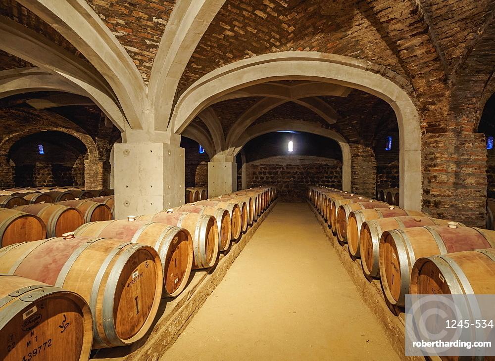 Wine Cellar, Santa Rita Winery, Alto Jahuel, Buin, Santiago Metropolitan Region, Chile