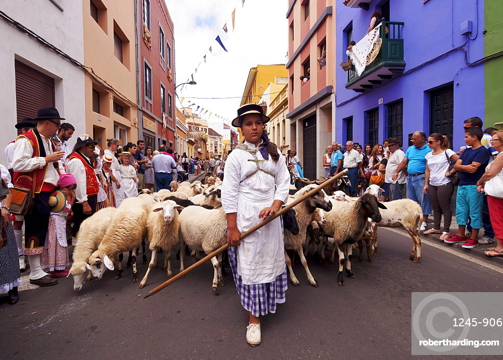 Romeria de San Benito de Abad, traditional street party, San Cristobal de La Laguna, Tenerife Island, Canary Islands, Spain