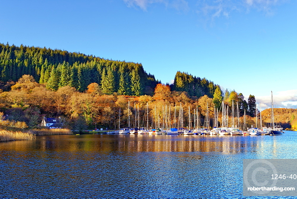 A tranquil autumn view of the Crinan Canal in The Scottish Highlands, Scotland, United Kingdom, Europe