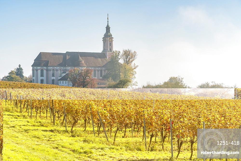 Birnau sanctuary and vineyards, Uhldingen-Muhlhofen, Baden-Wurttemberg, Germany, Europe