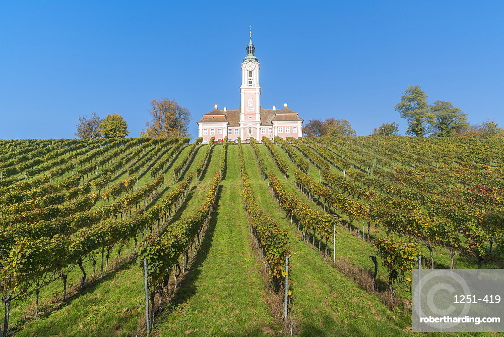 Birnau sanctuary and vineyards from below, Uhldingen-Muhlhofen, Baden-Wurttemberg, Germany, Europe