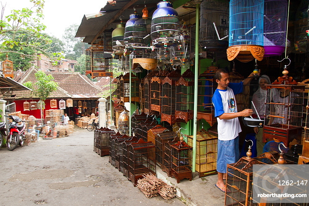 The bird and flower markets of Malang, Malang, Indonesia