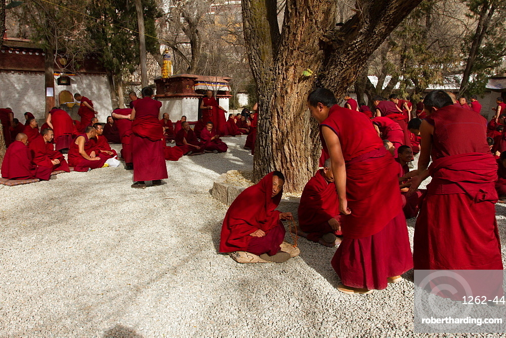 The debating Tibetan Buddhist monks of Sera monastery, Lhasa, Tibet, China, Asia