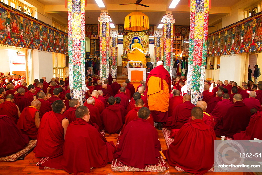 Tibetan Buddhist monks at Losar (Tibetan New Year) in the Dalai Lama Temple, McLeod Ganj, Dharamsala, Himachal Pradesh, India, Asia