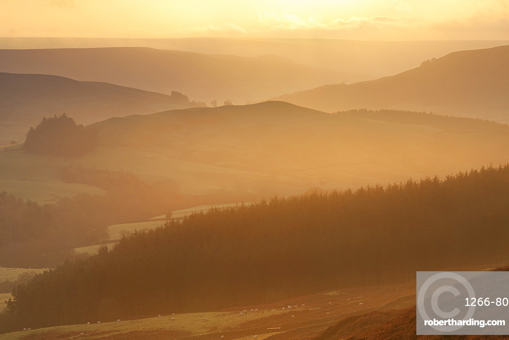 View over Bilsdale West Moor at sunrise towards Scugdale from Carlton Bank, Cleveland Hills North York Moors North Yorkshire UK