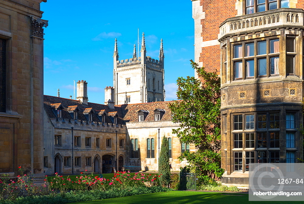 Pembroke College with the Pitt Building to the rear, Cambridge University, Cambridge, Cambridgeshire, England, United Kingdom, Europe