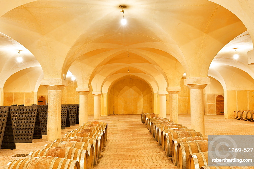 Wine cellar with wooden barrels. Buglio in Monte, Valtellina, Lombardy, Italy, Europe.