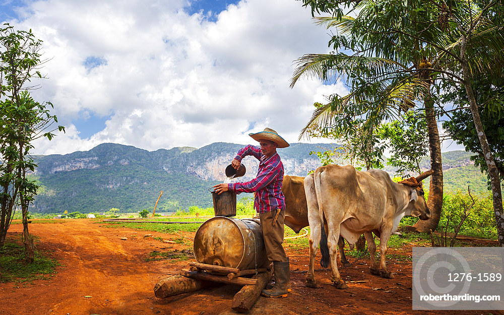 Farmer with work clothes drawing water from old well in Vinales National Park, UNESCO World Heritage Site, Pinar del Rio Province, Cuba, West Indies, Central America