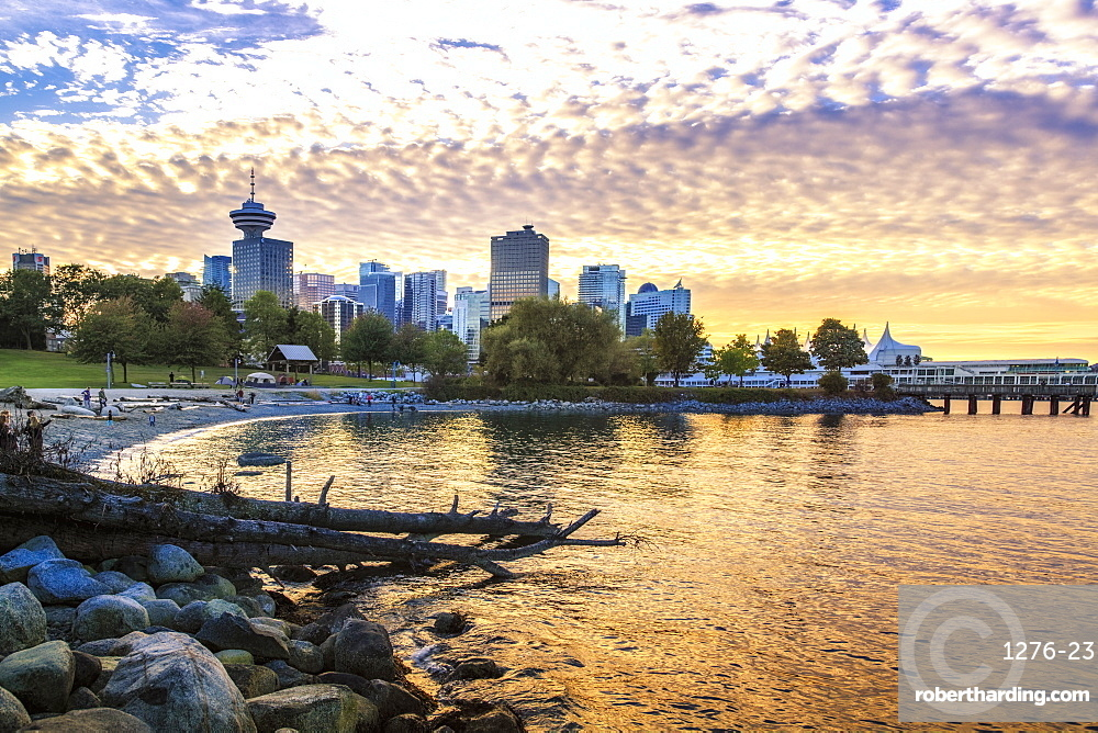 View of Canada Place and Vancouver Lookout Tower from CRAB Park, Vancouver, British Columbia, Canada, North America