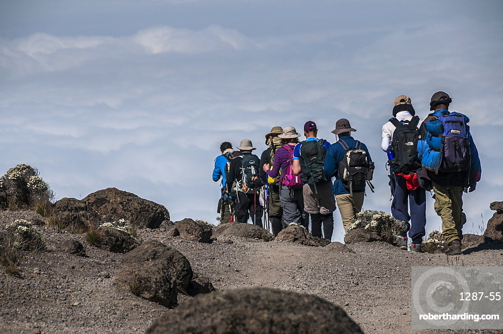 A group of Trekkers on the Machame Route on Mount Kilimanjaro descending towards the clouds, Tanzania, East Africa, Africa