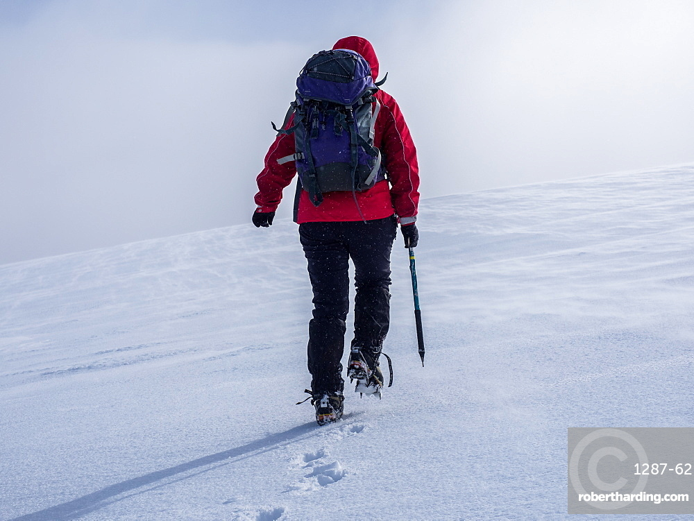 A female mountaineer crossing the snow fields in winter in the Cairngorm National Park, Scotland, United Kingdom, Europe
