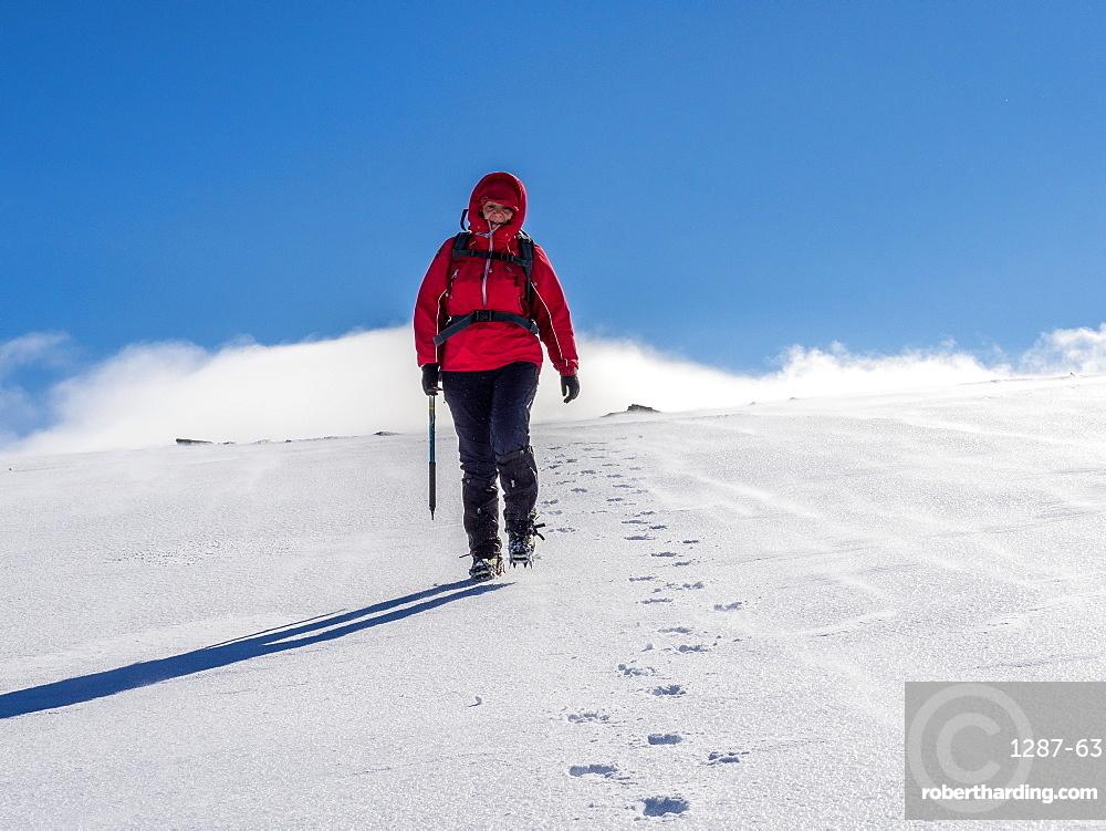 Female winter walker descending a fresh snowy slope in the Cairngorm National Park, Scotland, United Kingdom, Europe
