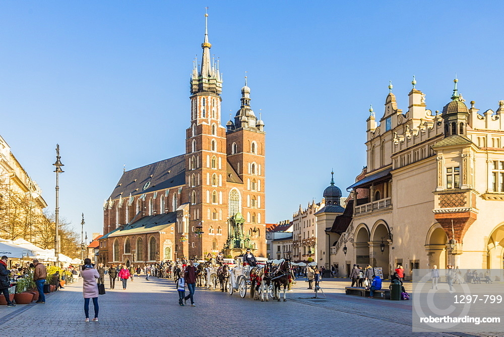 St. Mary's Basilica in the medieval old town Krakow, a UNESCO World Heritage site, in Krakow, Poland, Europe.