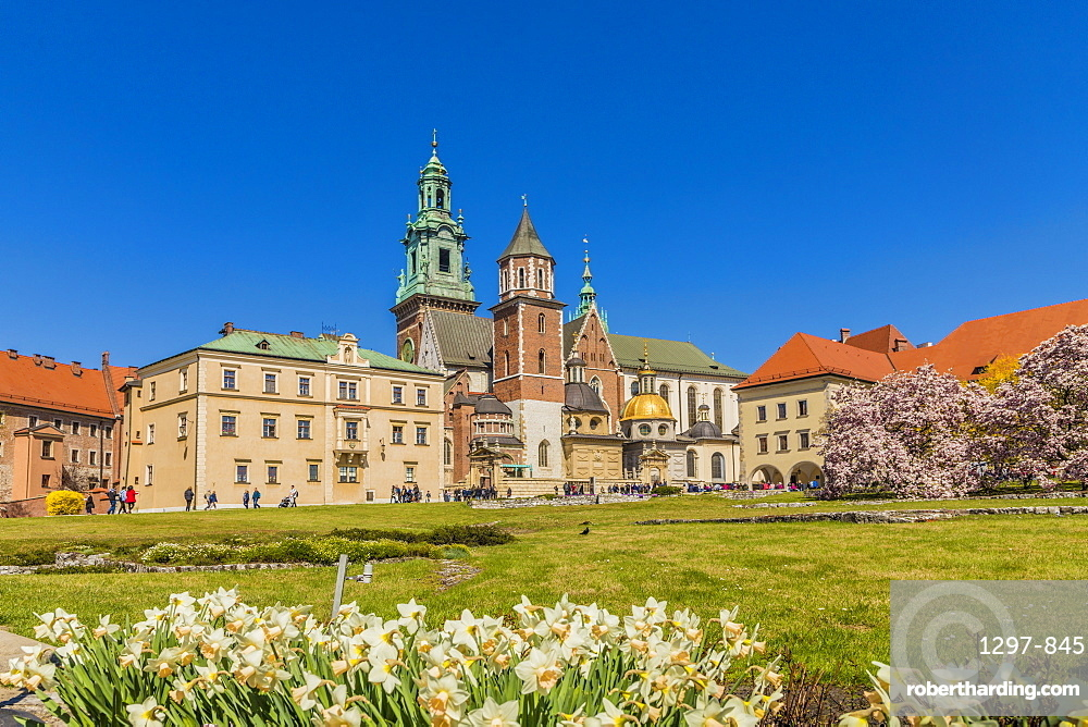 View of Wawel Cathedral at Wawel Royal Castle, a UNESCO World Heritage Site, in the medieval old town, in Krakow, Poland, Europe