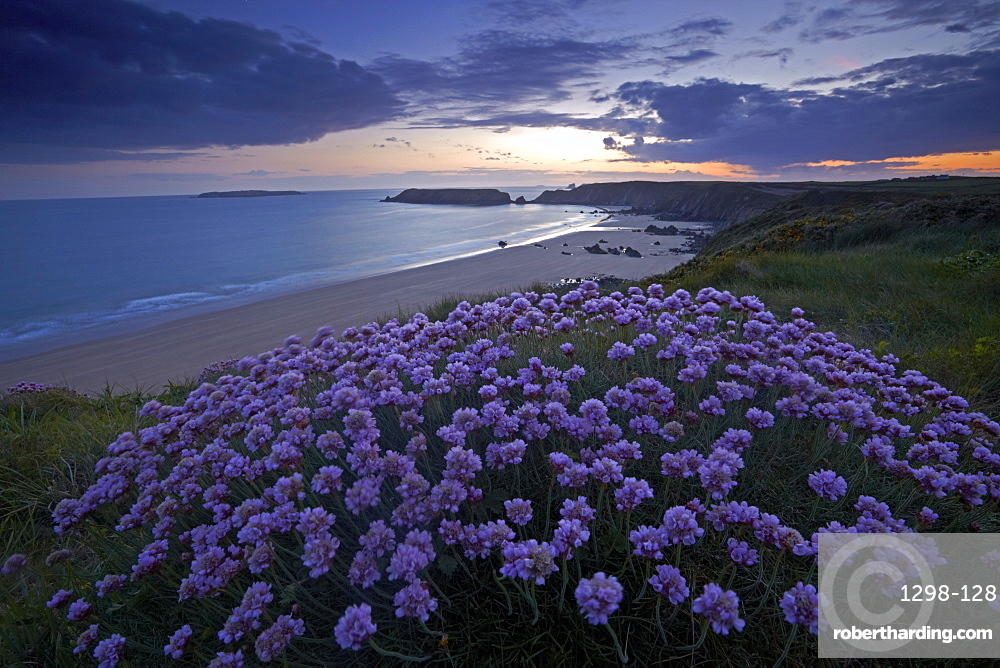 Sunset on the Wales Coast Path above Marloes, Pembrokeshire, Wales, United Kingdom, Europe