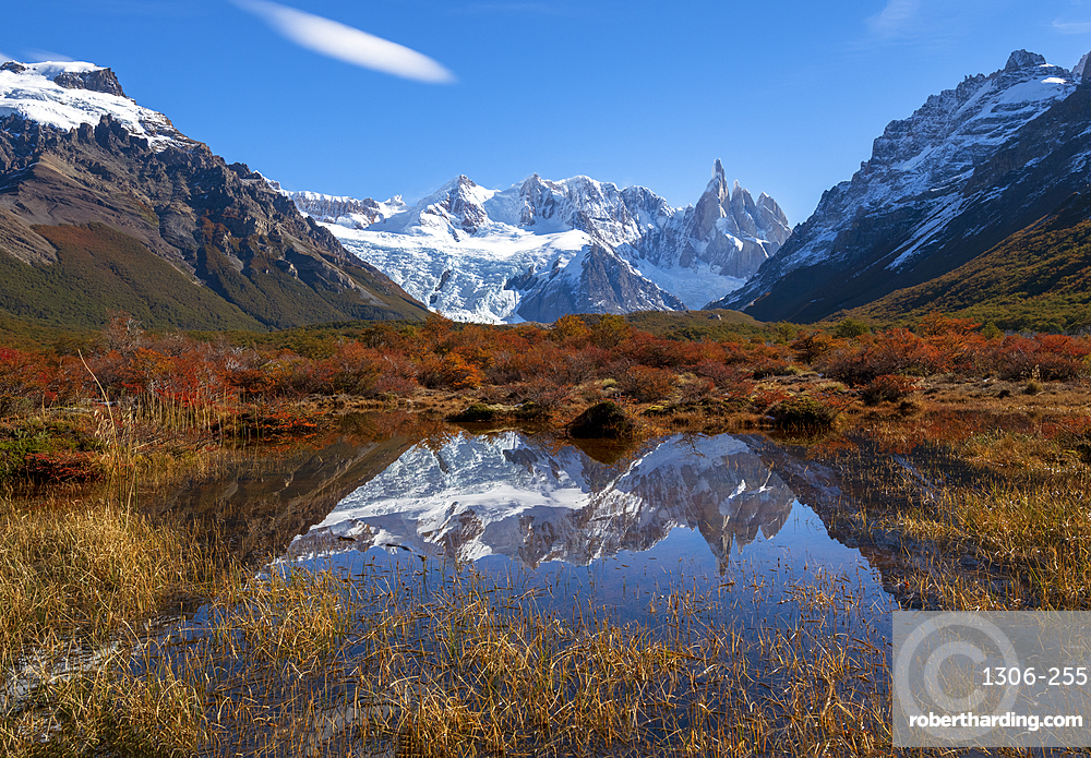 Autumnal colours in Los Glaciares National Park with reflections of Cerro Torro, Santa Cruz Province, Argentina