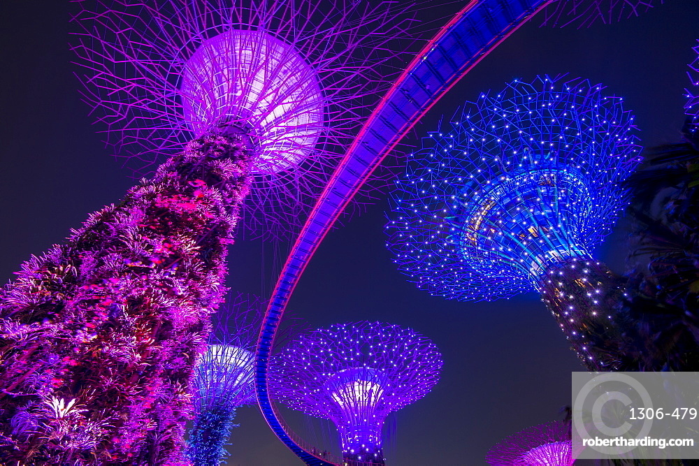 The Supertrees of Gardens by the Bay with high level walkway, at night, Singapore
