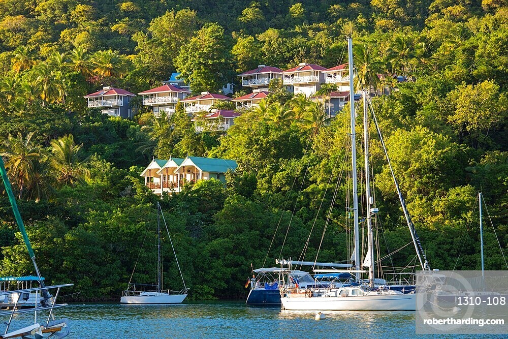 View across the tranquil harbour to wooded hillside, sunset, Marigot Bay, Castries, St Lucia, Lesser Antilles, West Indies