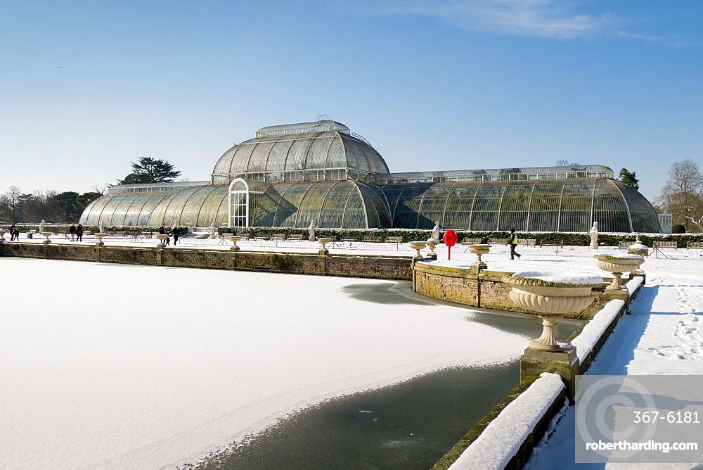 Palm House in winter, Kew Gardens, UNESCO World Heritage Site, London, England, United Kingdom, Europe