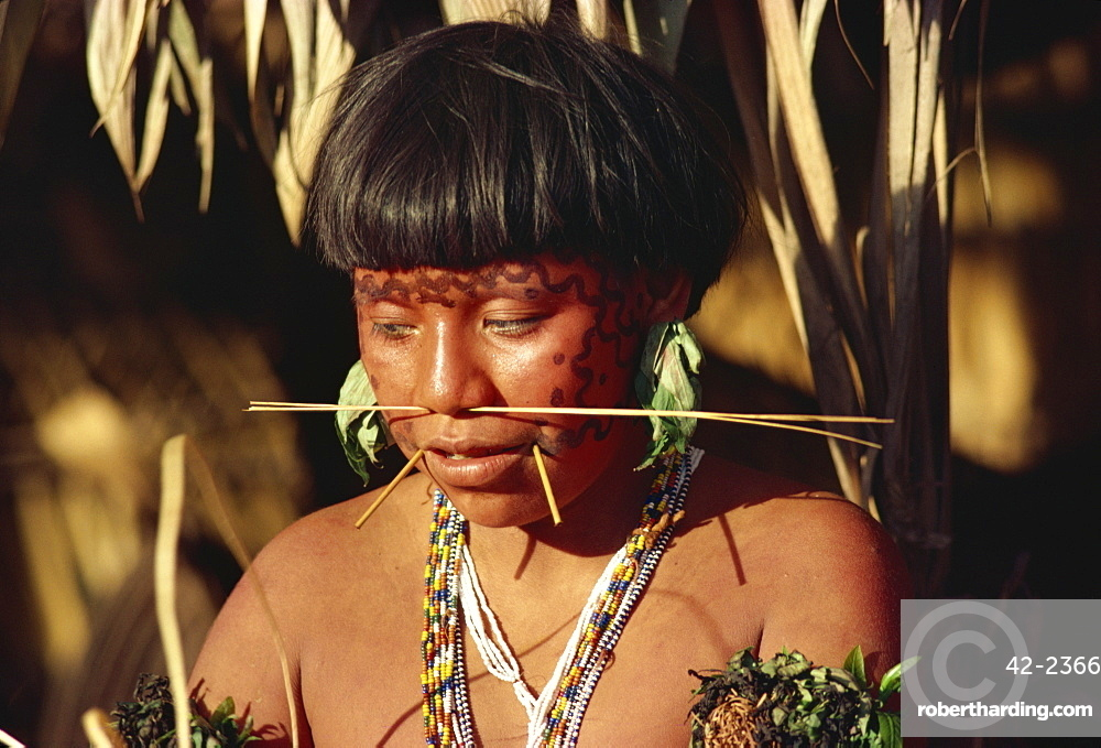 Portrait of a Yanomami woman with nose sticks and facial decoration in Brazil, South America