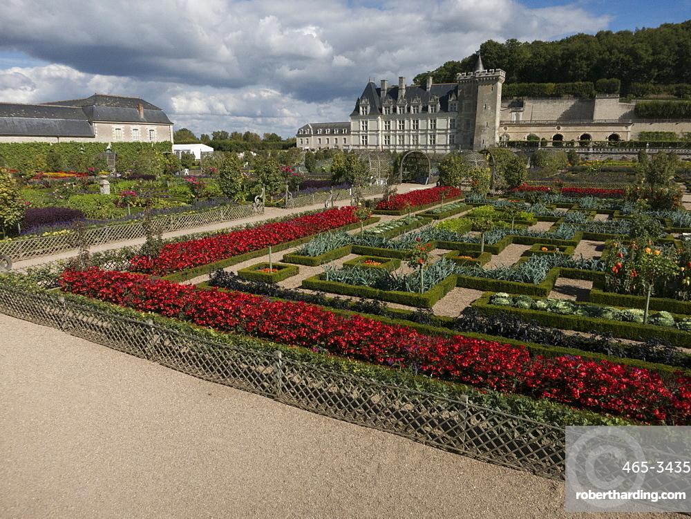 The kitchen gardens feature seasonal vegetables at the Chateau de Villandry, UNESCO World Heritage Site, Loire Valley near Tours, Indre et Loire, Centre, France, Europe