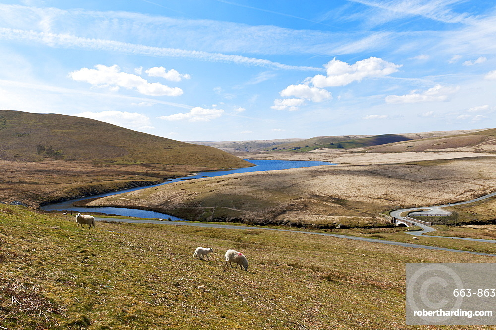 A landscape view of Elan Valley, Powys, Wales, United Kingdom, Europe