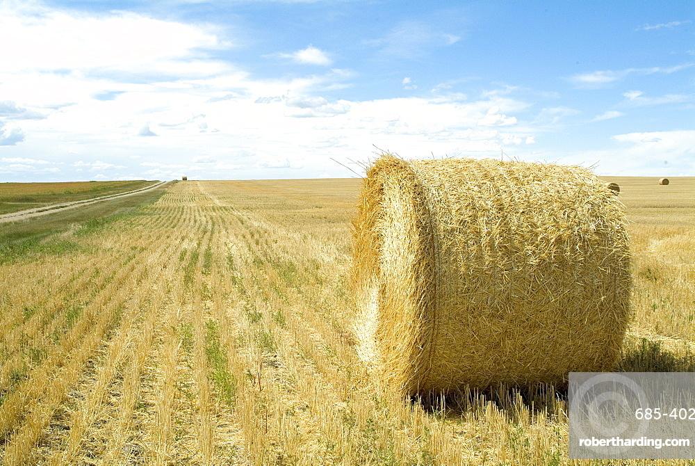 Haystacks, North Dakota, United States of America, North America