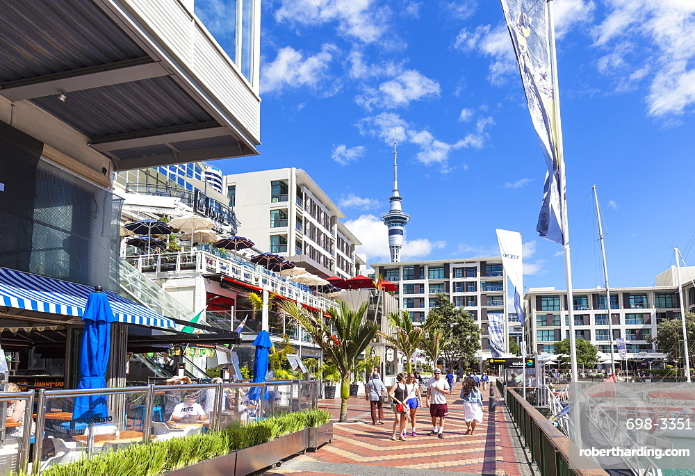 Restaurants and bars in waterfront area, Viaduct Harbour, Auckland, North Island, New Zealand, Pacific