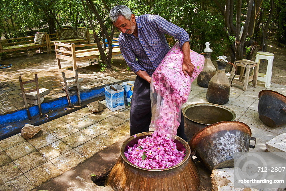 Distillation of rose for making rose water, Kashan, Isfahan Province, Iran, Middle East