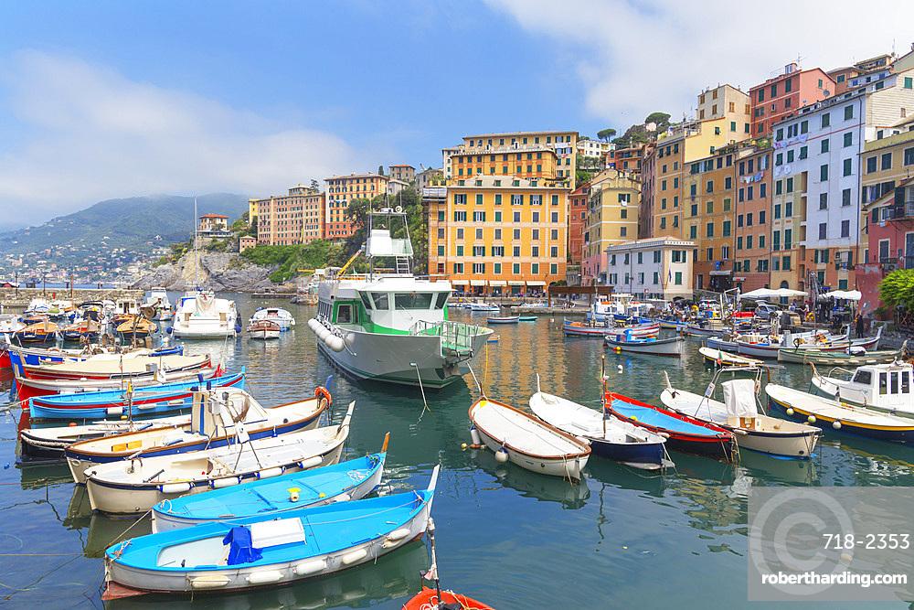 Camogli fishing port, Camogli, Riviera di Levante, Liguria, Italy, Europe