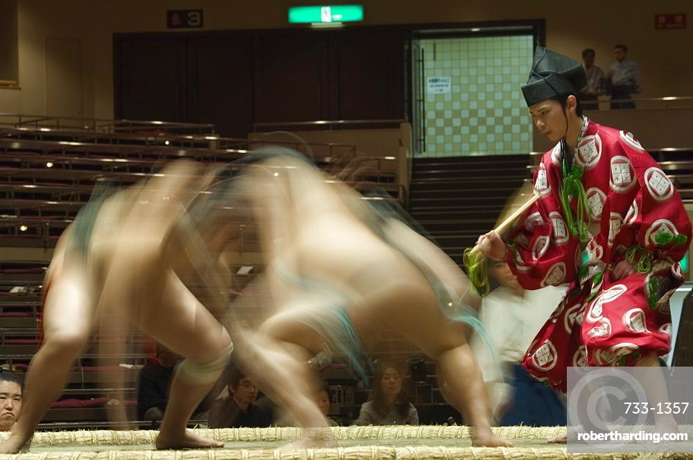 Sumo wrestlers competing, Grand Taikai Sumo Wrestling Tournament, Kokugikan Hall Stadium, Ryogoku district, Tokyo, Japan, Asia