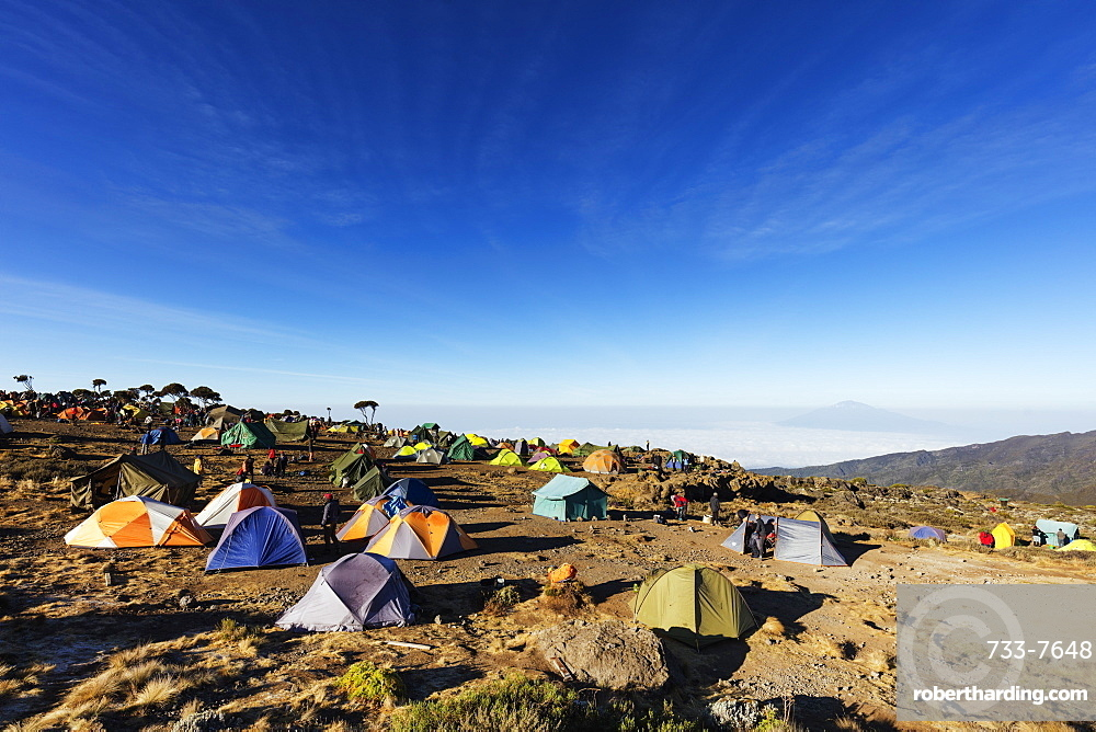 East Africa, Tanzania, Kilimanjaro National Park, Unesco World Heritage site, tents at Umbwe camp with view of Mt Meru (4565m)