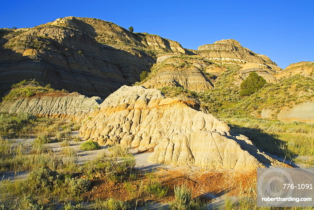 Theodore Roosevelt National Park North Unit, Watford, North Dakota, United States of America, North America