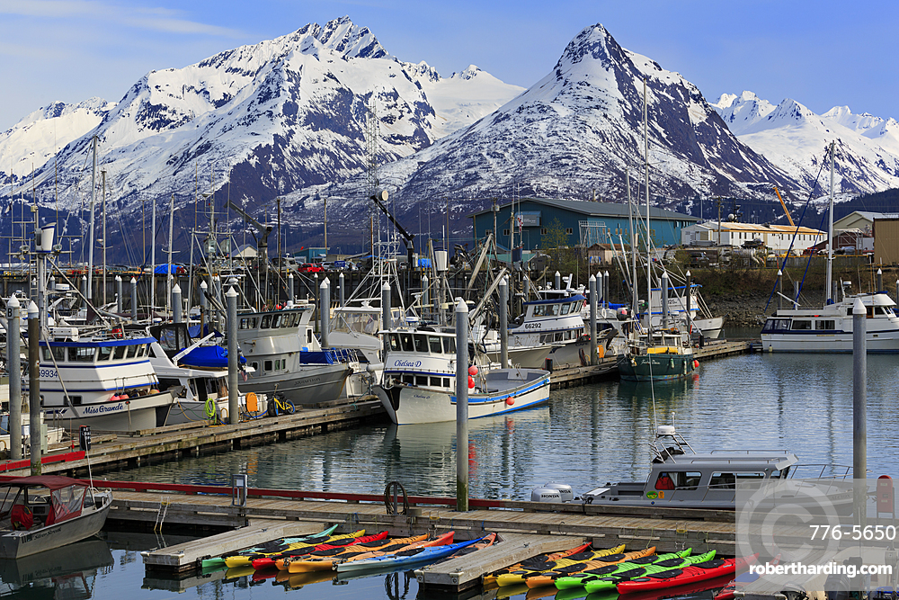 Small Boat Harbor, Valdez, Prince William Sound, Alaska, USA