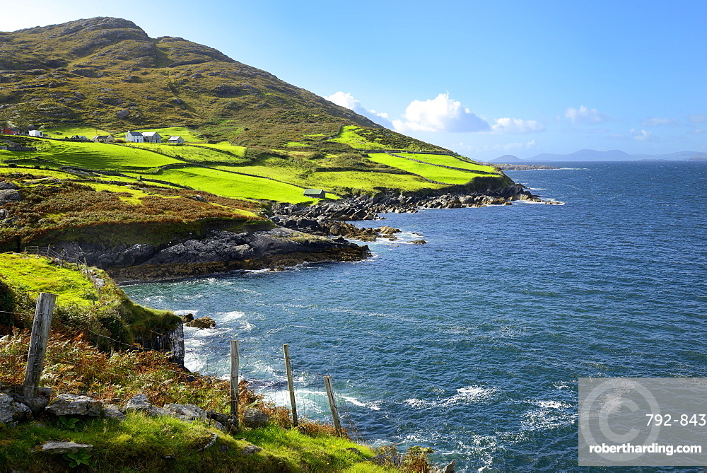 Coastal View, Ring of Beara, Beara Peninsular, Wild Atlantic Way, County Cork, Republic of Ireland, Eire, Europe