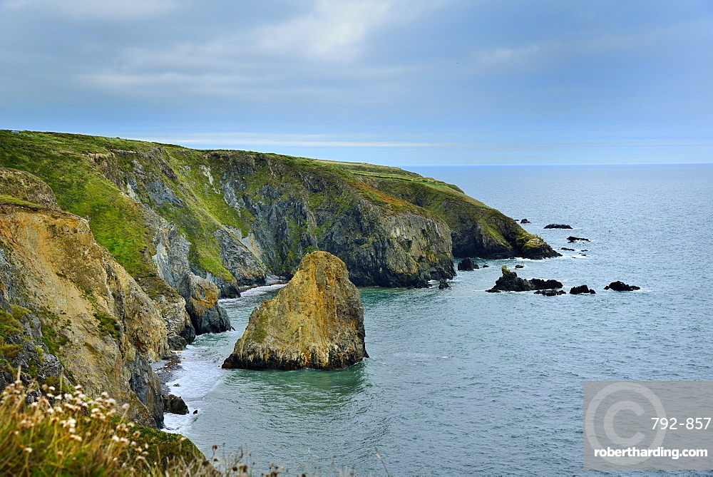 Coastal Cliffs, Copper Coast Drive, County Waterford, Munster, Republic of Ireland, Europe
