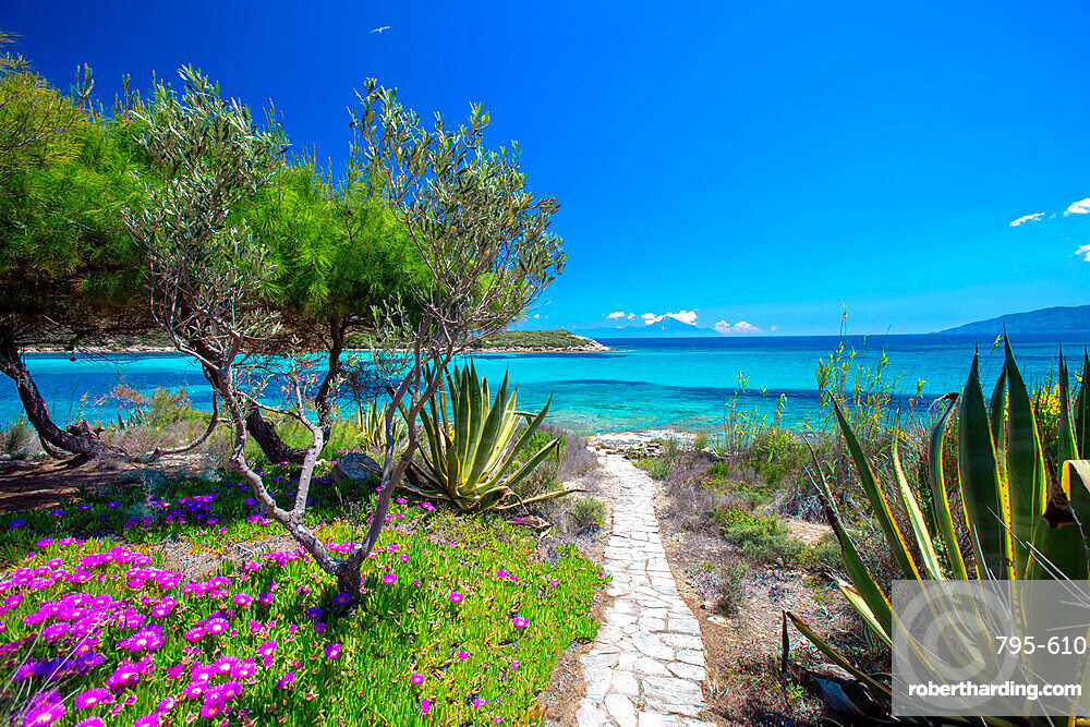 road to the beach, halkidiki, greece