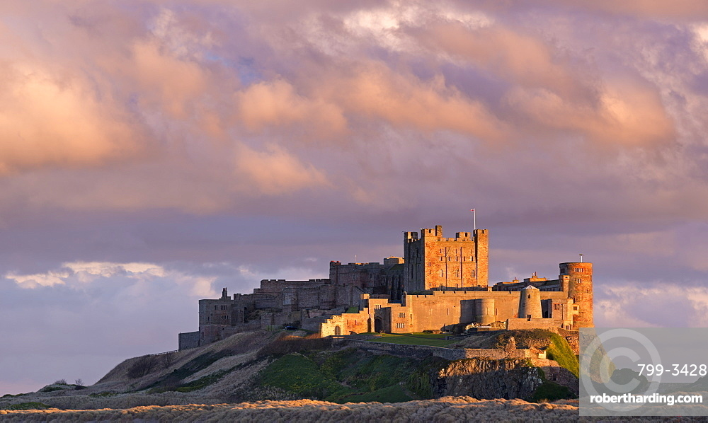 Rich evening sunlight glows against Bamburgh Castle at sunset, Northumberland, England, United Kingdom, Europe