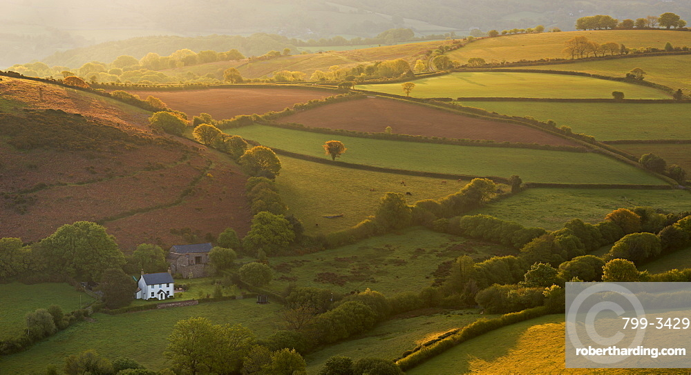 Early morning sunshine illuminates rolling farmland, Dartmoor, Devon, England, United Kingdom, Europe