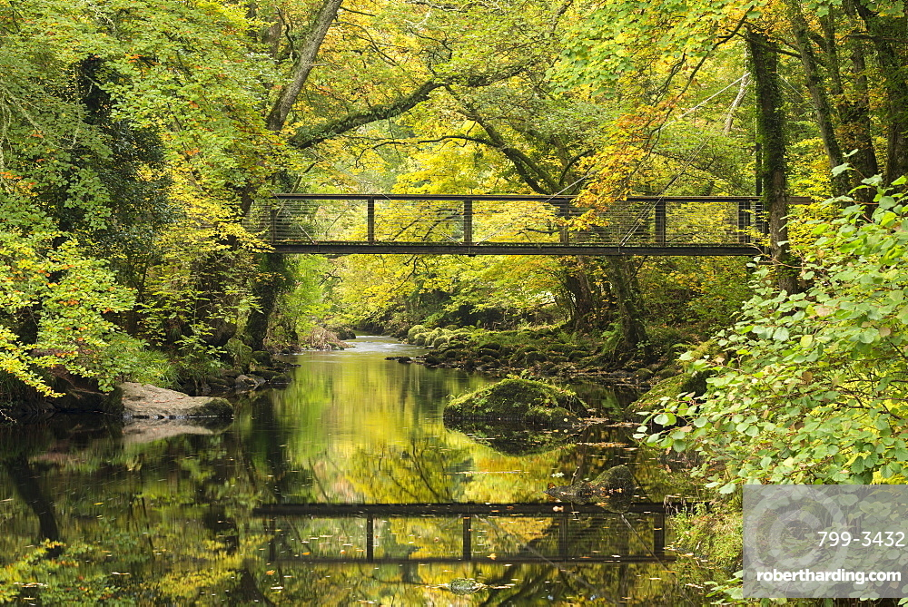 Footbridge spanning the River Teign near Fingle Bridge, Dartmoor, Devon, England, United Kingdom, Europe