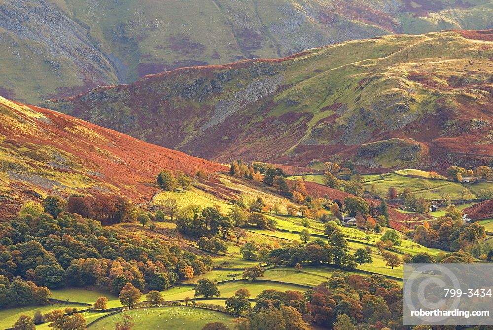 Rural farmland below Cumbrian mountains, Martindale, Lake District, Cumbria, England, United Kingdom, Europe